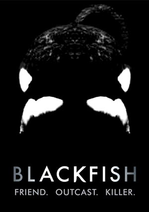 Blackfish-3, Copyright  Magnolia Pictures / NFP Marketing & Distribution