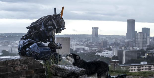 Chappie-2, Copyright Sony Pictures Releasing