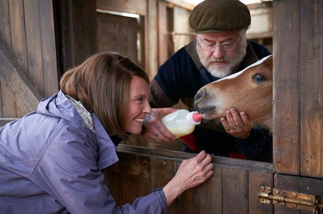 Dream Horse 2 - Copyright WELTKINO Filmverleih