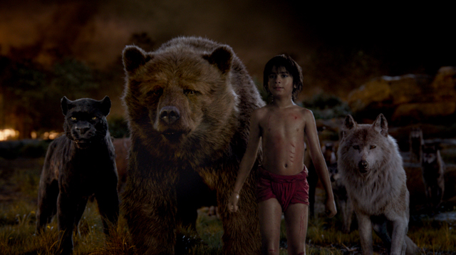 THE JUNGLE BOOK, Copyright Walt Disney Studio Motion Pictures