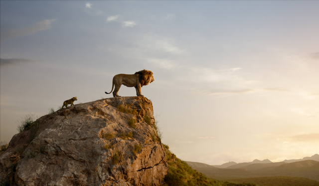 Lion King 3, Copyright WALT DISNEY STUDIOS MOTION PICTURE