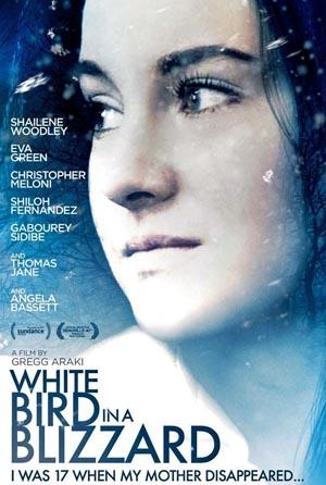 White-Bird-Blizzard-3, Copyright Magnolia Media